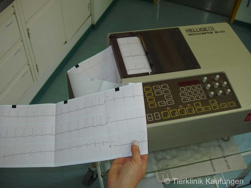 Konventionelles EKG (2 Minuten EKG)